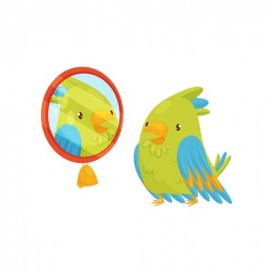 Green parrot looking at yourself in the mirror. Bird with bright feathers. Funny cartoon character. Graphic element for children book. Vector illustration in flat style isolated on white background.
